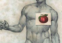 El cultivo del tomate después de la Reforma - Fernando Castelló