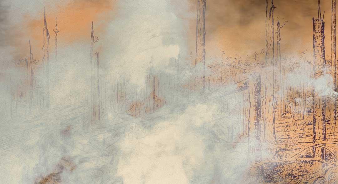 Sobre Ver Cortinas De Humo Donde Hay Un Incendio Elasterisco - Ver-cortinas