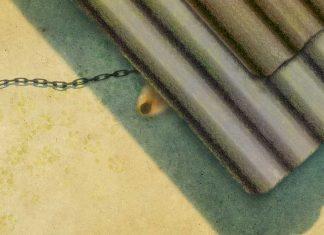 Los perros de los cortijos - Francisco Gonzalez