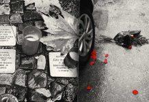 Rosas contra el olvido - Jorge Valencia